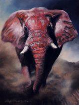 La détermination de l'éléphant